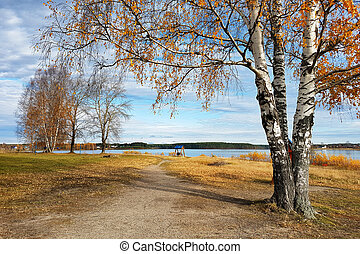 Autumn trees on the banks of a beautiful forest lake.