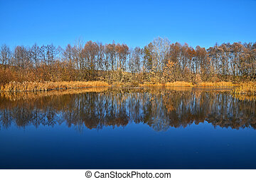 Autumn trees reflection in lake water surface