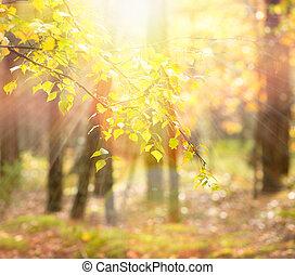 autumn., upadek