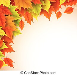 Autumn vector background template. Fall season maple leaves elements
