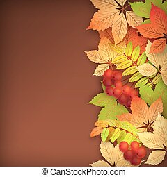 Autumn Vector Fall Leaves - Vector autumn background with...