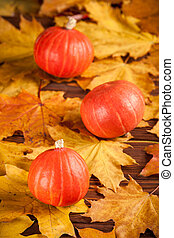 Autumn vertical banner with yellow leaves, orange pumpkins on a wooden textured backdrop. Fall background.