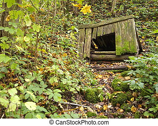 autumn, very old wooden draw-well