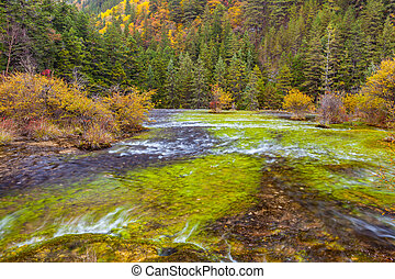 Autumn view at Jiuzhaigou National Park