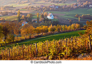 Autumn view of church on the rural hills