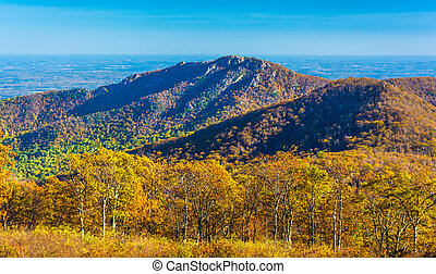 Autumn view of Old Rag, in Shenandoah National Park, Virginia.