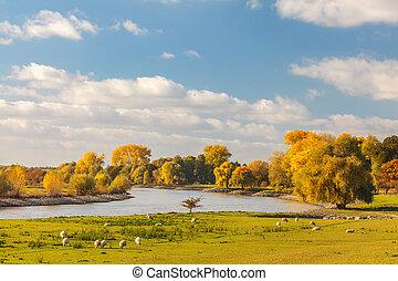 Autumn view of the Dutch river IJssel between Arnhem and...