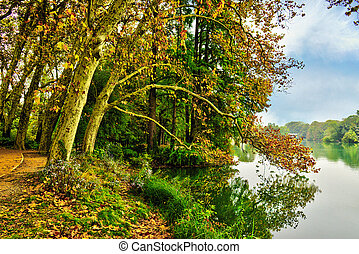 Autumn view of the lake at Golden Head Park in Lyon