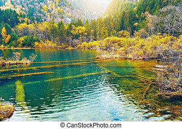 Autumn view of the lake. Jiuzhaigou nature reserve. China.