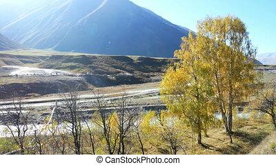 Autumn village mountains - Fall and autumn season tree...