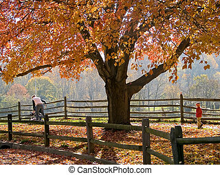 Autumn Walk - A mom strolls for a walk with her two children...