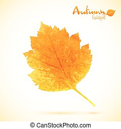 Autumn watercolor vector leaf