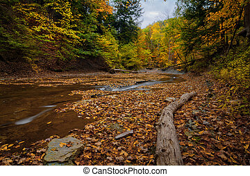 Autumn Waterfall - A scenic view along Brandywine Creek in...