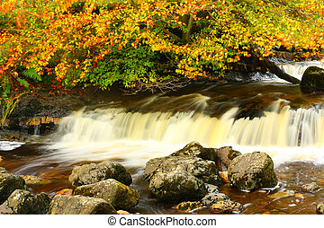 Autumn waterfall on the river