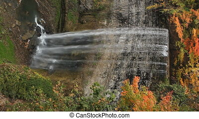 Autumn waterfall. Vertical. - Tews Waterfall in Dundas,...