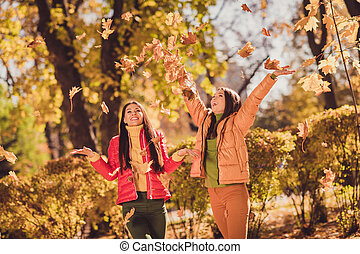 Autumn weekend fun time concept. Positive girls buddies enjoy throw catch air fly maple leaves wear red yellow outerwear in sunset forest park lawn
