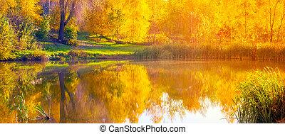 Autumn wide lake