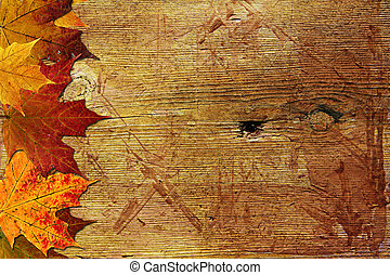 Autumn wooden background with maple