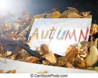 Autumn writing on a car