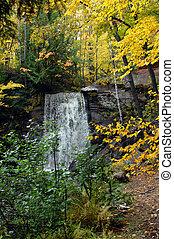 Autumn yellow at Hungarian Falls - Autumn yellow surrounds...