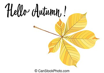 Autumn yellow leaf of a chestnut isolated on white background. Vector Illustration