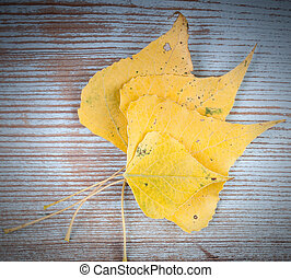 Autumn yellow leaves on vintage wooden surface