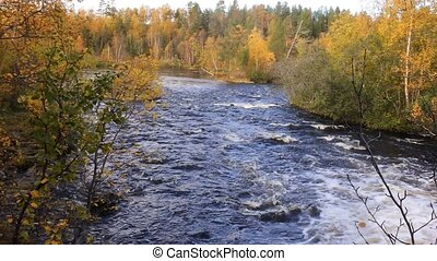 Autumn, yellow leaves, waterfall - Autumn forest on banks of...