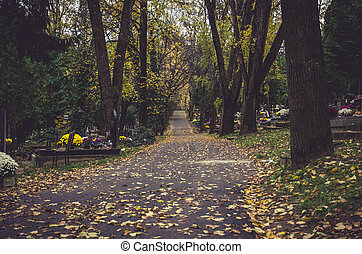 autumnal aisle path in the cemetery