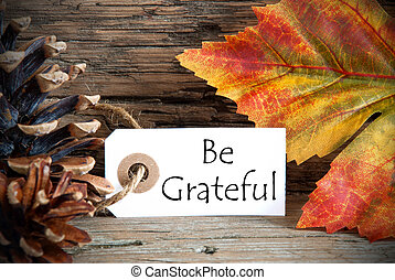 Autumnal Background with a Label with Be Grateful on it
