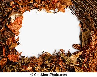 Autumnal border