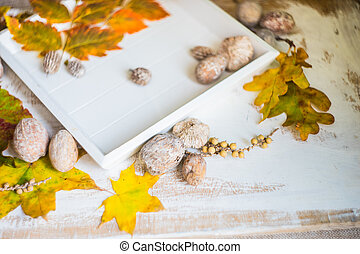 Autumnal concept with yellow leaves