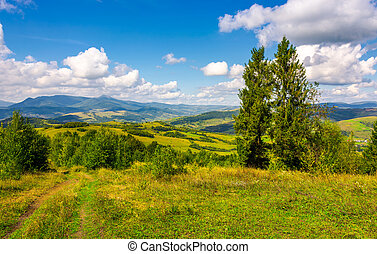 autumnal countryside of Carpathian mountains. country road...