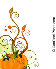 Autumnal design - Vector illustration of two pumpkins on a...