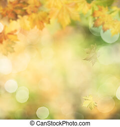 Autumnal fall, abstract environmental backgrounds