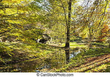 Autumnal forest landscape with river