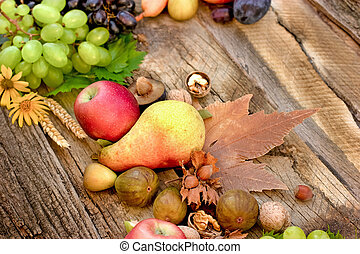 Autumnal fruit S on rustic table