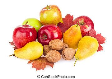 Autumnal fruits still life