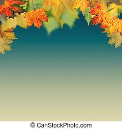 Autumnal haze, abstract environmental backgrounds