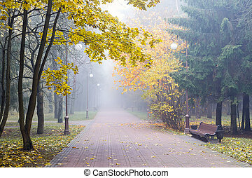 autumnal landscape with park alley and yellow trees alongside it in foggy weather