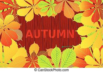 Autumnal leaf of buckeye,