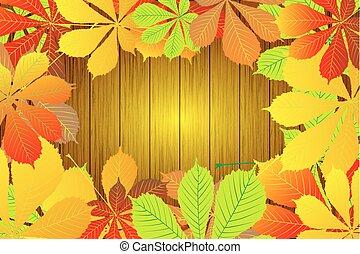 Autumnal leaf of chestnut