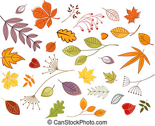 Autumnal leaves and plants set for seasonal design
