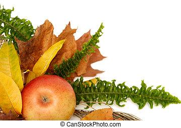 Autumnal leaves arragement