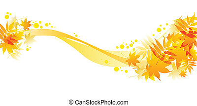 Autumnal leaves on white background