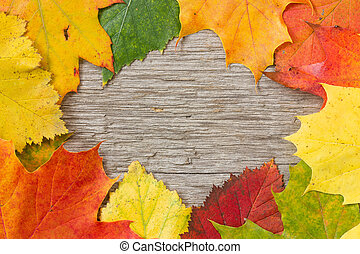 Autumnal  leaves over wooden background