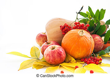 Autumnal pumpkins, apples and ashberry with fall leaves