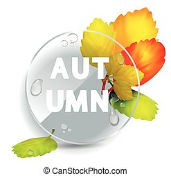 Autumnal round frame. Bouquet of autumn leaves. Background with autumn leaves.