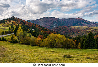 autumnal scenery in Carpathian mountains. beautiful...