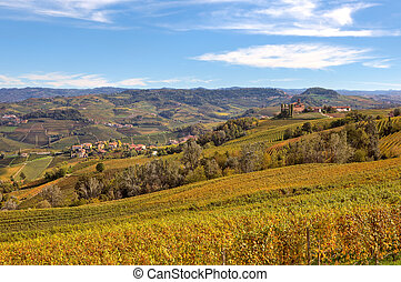 Autumnal view of vineyards in Piedmont, Italy.