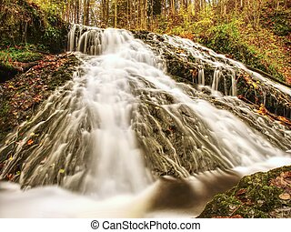 Autumnal waterfall on mountain stream. Foamy water is falling over mossy boulder and corful leaves.